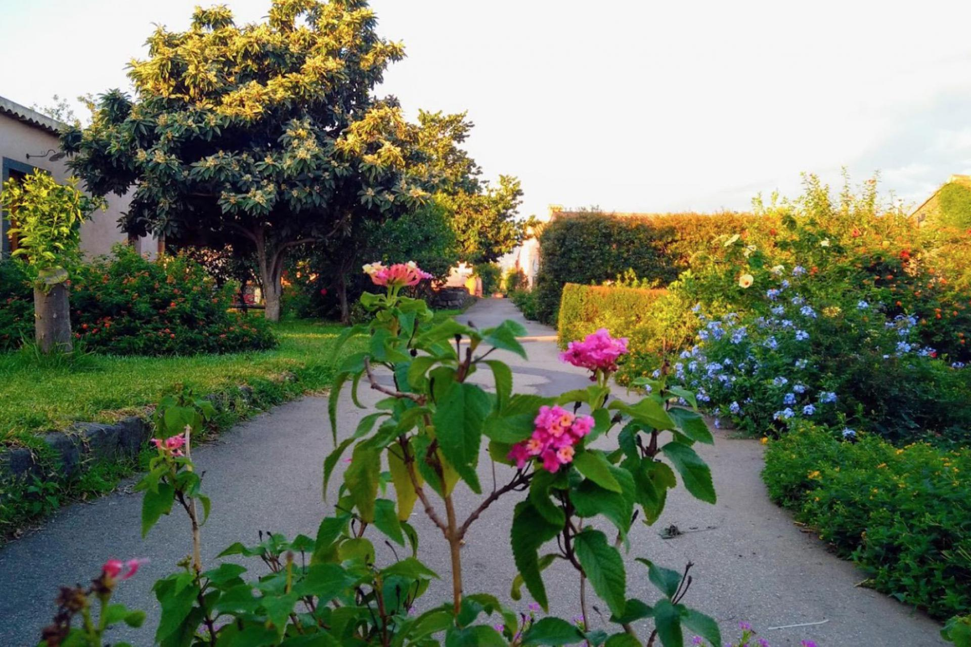 Agriturismo Sizilien Agriturismo Sizilien, inmitten von Zitrusbäumen gelegen