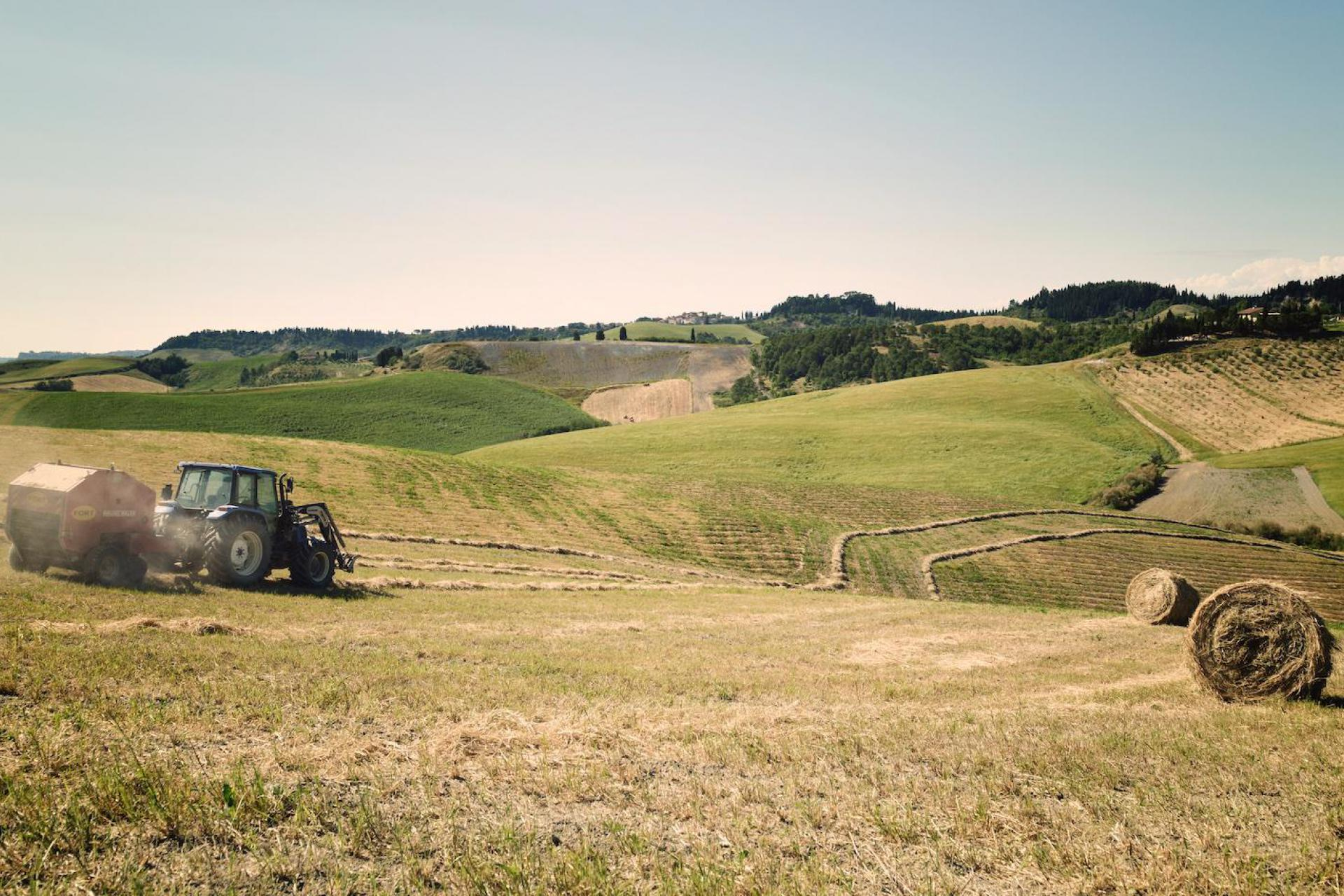 Agriturismo Toskana Klassischer Agriturismo - Landhaus in der Toskana   myitalyselection.de