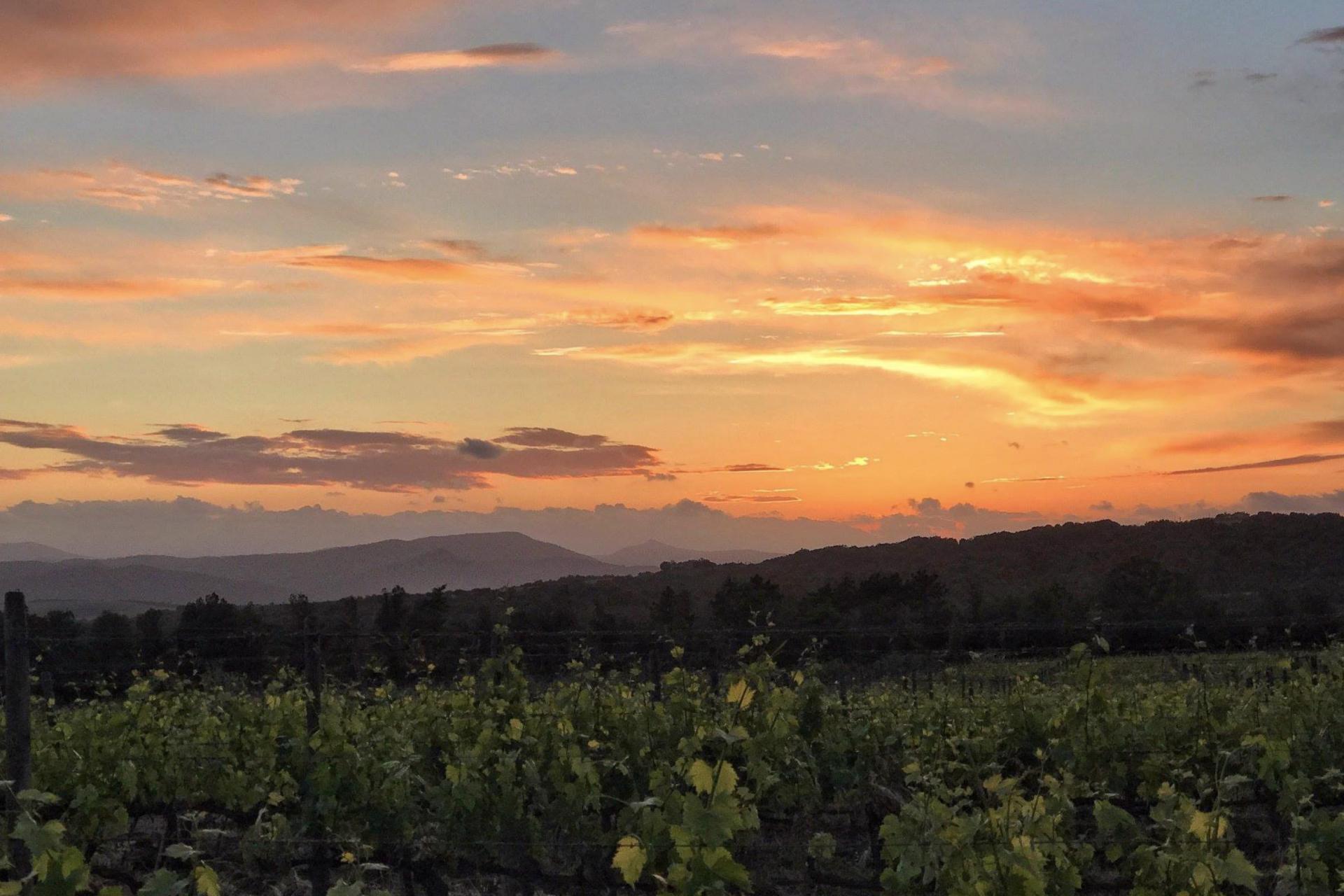 Agriturismo Toskana Urlaub in der Nähe von Montalcino   myitalyselection.de